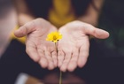 Как правильно извиниться - полезные советы
