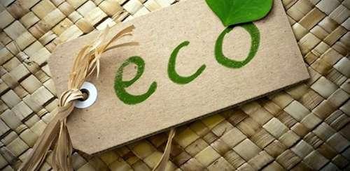 Производство экологической продукции: 4 идеи для бизнеса