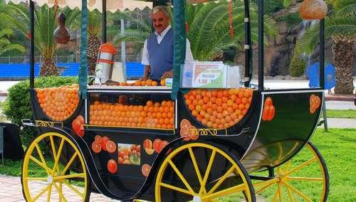 Продавцы-путешественники, или Как появилась профессия торговый представитель